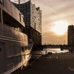 Das Schiff Seute Deern vor der Elbphilharmonie in der Abendsonne